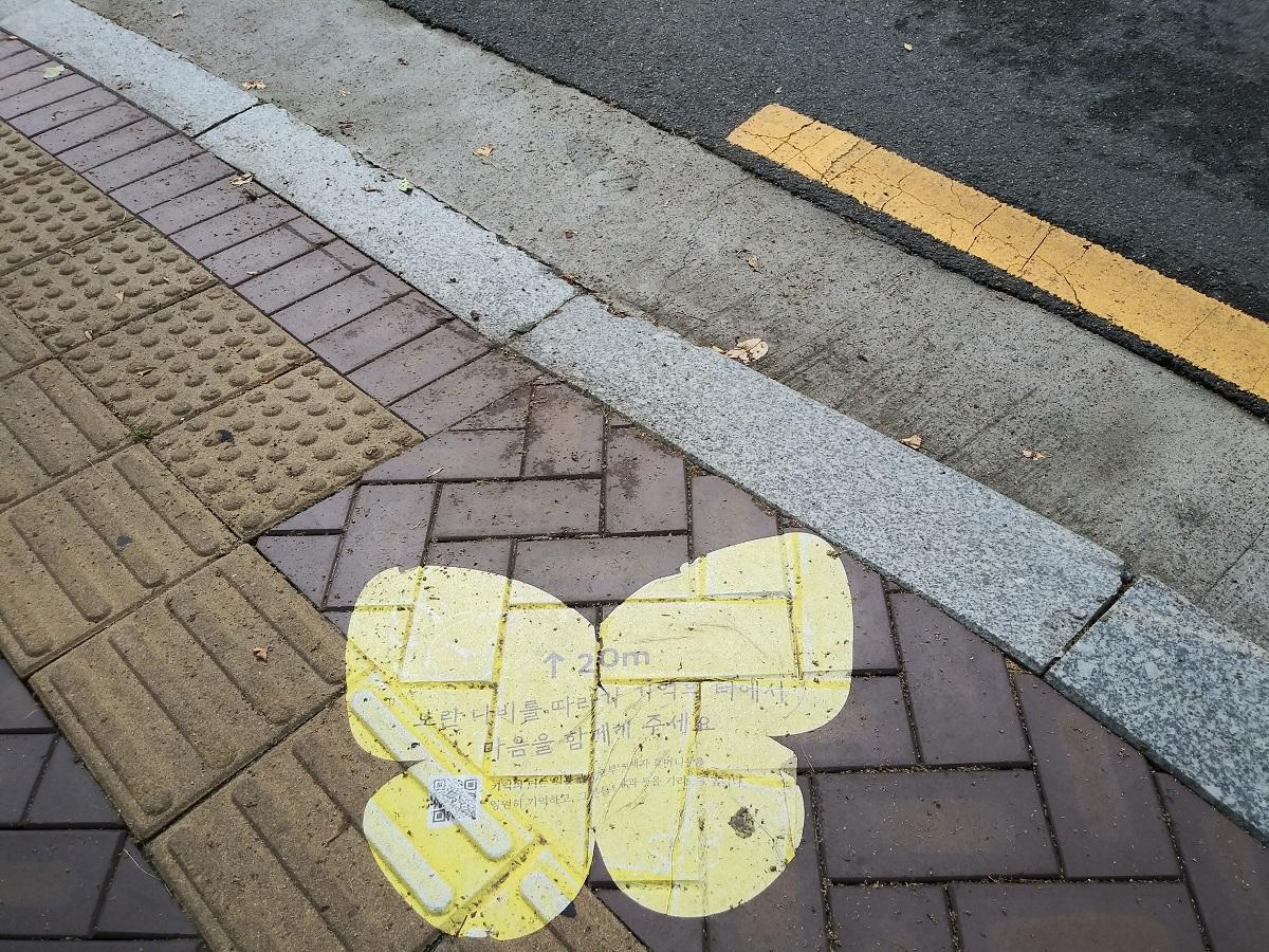 기억의 터 앞 나비 표지 ©오하라미