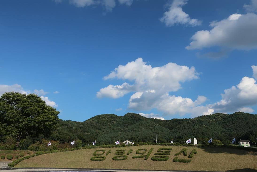 망향의동산 잔디밭 ©김용자
