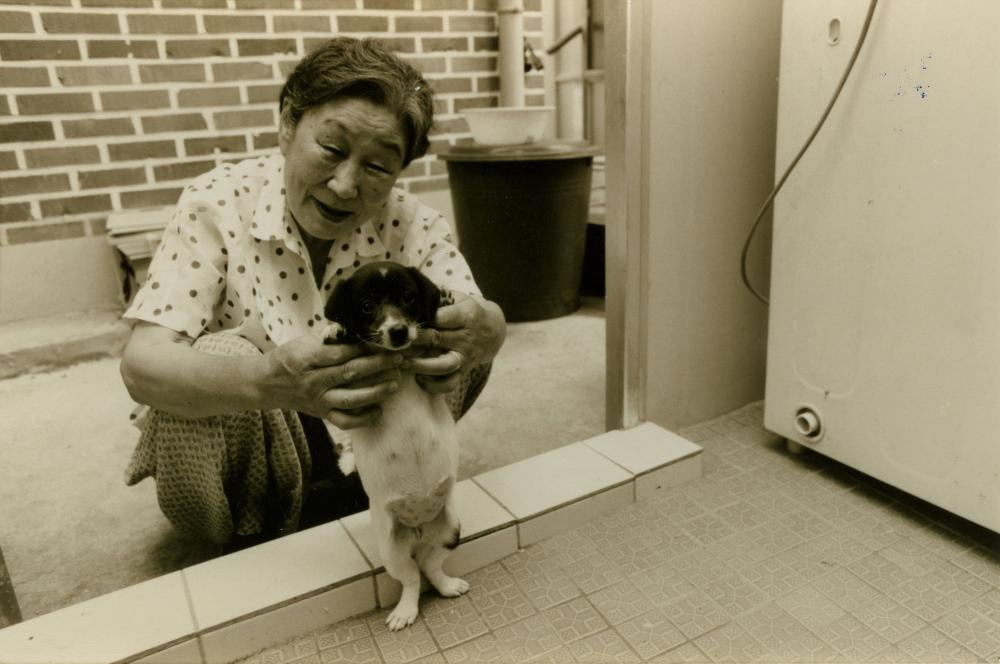 김복동이 나눔의집에서 강아지를 안고 웃고 있다. (사진 제공 : 나눔의 집)